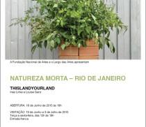 Naatureza_Morta_flyer