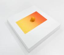 Carlos Nunes, Laranja, 2016, serigrafia e laranja, 74 x 56 cm